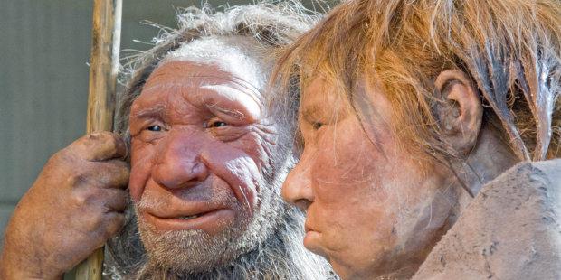 Ученые объяснили эволюцию человеческого лица: с таким трудно не согласиться