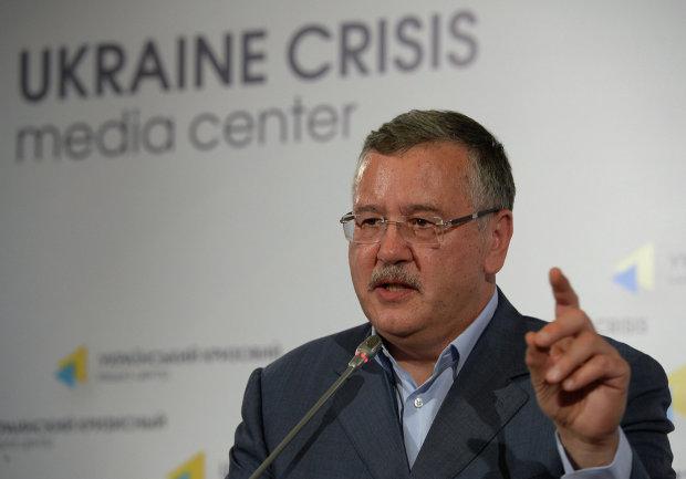 Гриценко идет по головам, для Тимошенко и Порошенко наступили темные времена, впереди только Зеленский