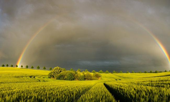 Синоптики рассказали чего ждать от погоды в ближайшие дни: Украину испепелит солнце и зальют дожди