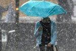 Дожди. Фото: скрин youtube
