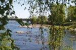 Река, природа, лето. Фото: скриншот Youtube