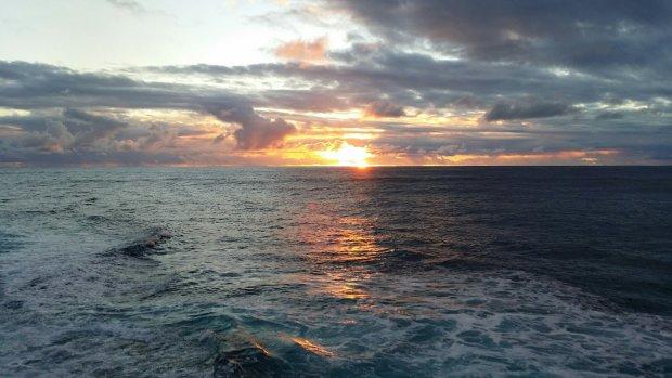 СЕНСАЦИЯ! 5 месяцев в океане и чудесное спасение (видео)