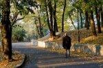 Самое время для прогулок: в Украину ненадолго вернется прекрасная погода - прогноз