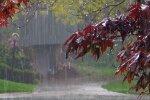 Дождь, фото: скриншот You Tube