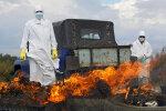 Коронавирус из Китая идет в Украину: в МОЗ забили тревогу
