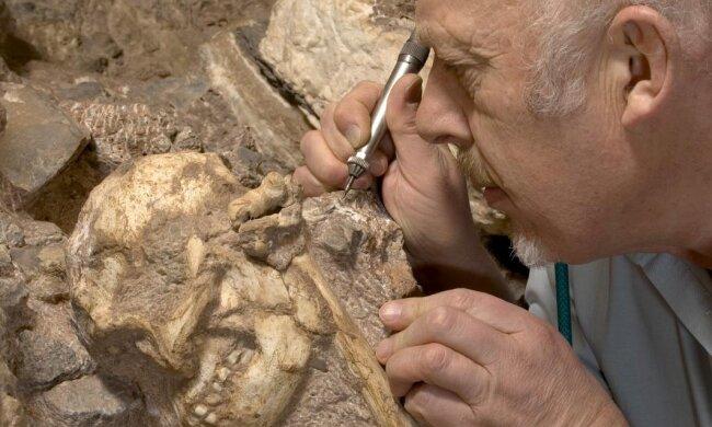Ученые сделали невероятное открытие о происхождении человека