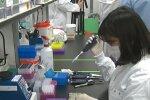 В Китае зафиксирована вспышка лихорадки, которую провоцируют укусы клещей. Фото: скриншот YouTube