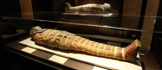 Все ложь, расходимся: ученые раскрыли гнусную тайну самой высокой в мире мумии