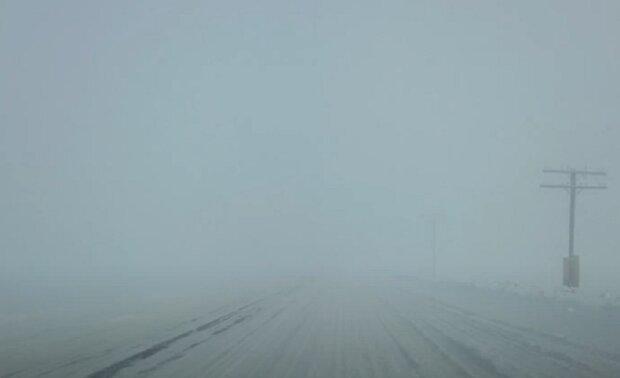 Туман на дороге. Фото: скриншот youtube-видео