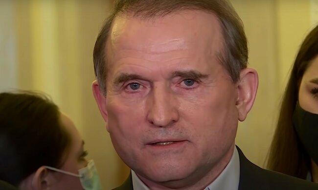 Виктор Медведчук. Фото: скриншот YouTube-видео
