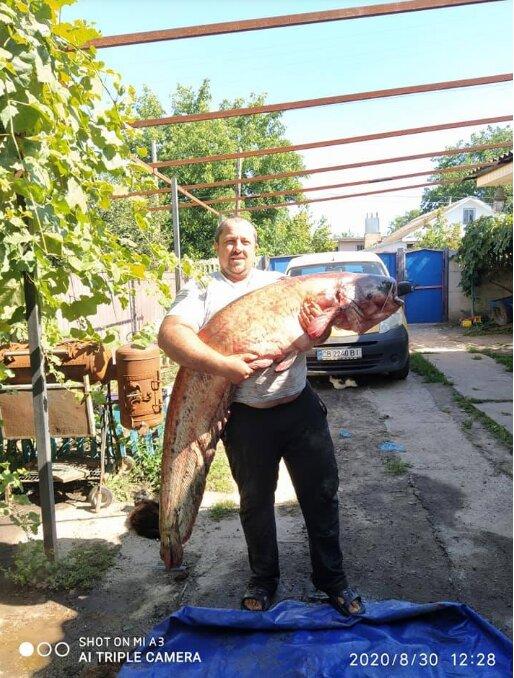 элементом благоустройства фото о рыбалке сомы чтобы
