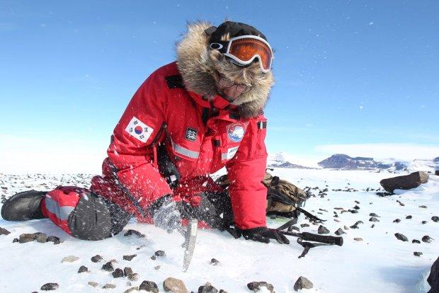 Ученые обнаружили невероятную находку под толщей снега: такое показывали только в кино