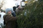 Елки по цене золота: во сколько обойдется украинцам дерево Нового года 2020
