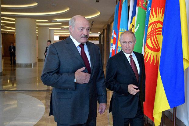 Бацька струсил и побежал извиняться: стычка Лукашенко и Путина заглажена наедине, таких выражений лучше не слышать