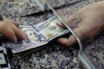 Доллар набирает обороты, гривна слабеет: курс валют на 21 ноября