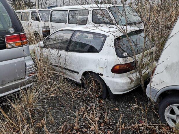 В сети показали нетронутые авто в зоне отчуждения. Мрачные фото гниющих «ласточек»