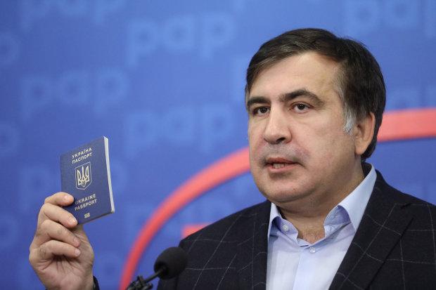 Ответ Саакашвили на призыв Путина загнал всех в ступор: «Я рад, что вы, Владимир Владимирович…»