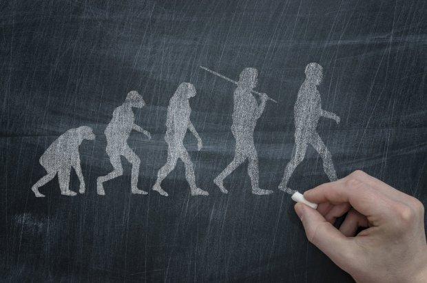 Нас учили неправильно: уникальное открытие перевернуло понятие об эволюции человека