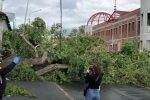 Последствия урагана в России. Фото: youtube