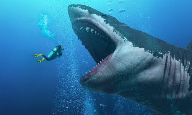 Он жив: на дне океана нашли след крупнейшего в мире хищника