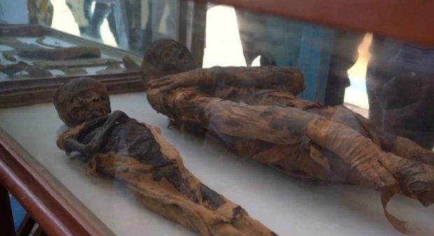 Египетские археологи поразили мир новой находкой: уникальная гробница сохранила свой первозданный вид