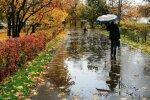 Прощальная улыбка осени: в Украину идет небывалое потепление - удивились даже синоптики