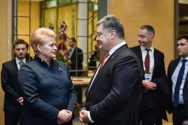 Президент Литвы Грибаускайте подала пример скромности украинским политикам, но те, как обычно, расшибли себе лоб в реверансе