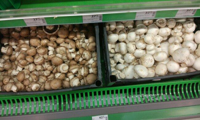 Супермаркеты травят украинцев плесенью: от этих фото становится тошно