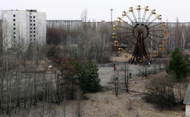 """""""Погибли мгновенно"""": ученые рассказали о природе в зоне отчуждения Чернобыльской АЭС"""